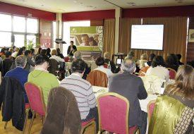 Diseño y Ejecución Piloto Programa Aprende de Alfabetización Digital. Junta de Castilla y León